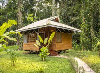 บ้านไม้ยกพื้นหลังเล็ก สไตล์คาริเบียน ล้อมรอบด้วยบรรยกาศป่าธรรมชาติ