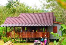 บ้านยกพื้นหลังเล็ก ๆ น่ารักอบอุ่น มีระเบียงกว้าง ประดับไม้แขวนสวยงาม