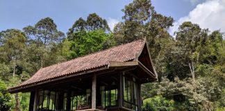 บ้านไม้ยกพื้น 100 ปี บรรยากาศล้อมรอบด้วยธรรมชาติ